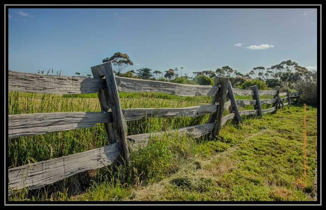 the wonky fence