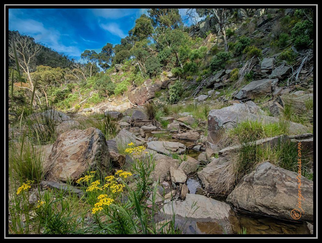 Stoney Creek Anakie Gorge